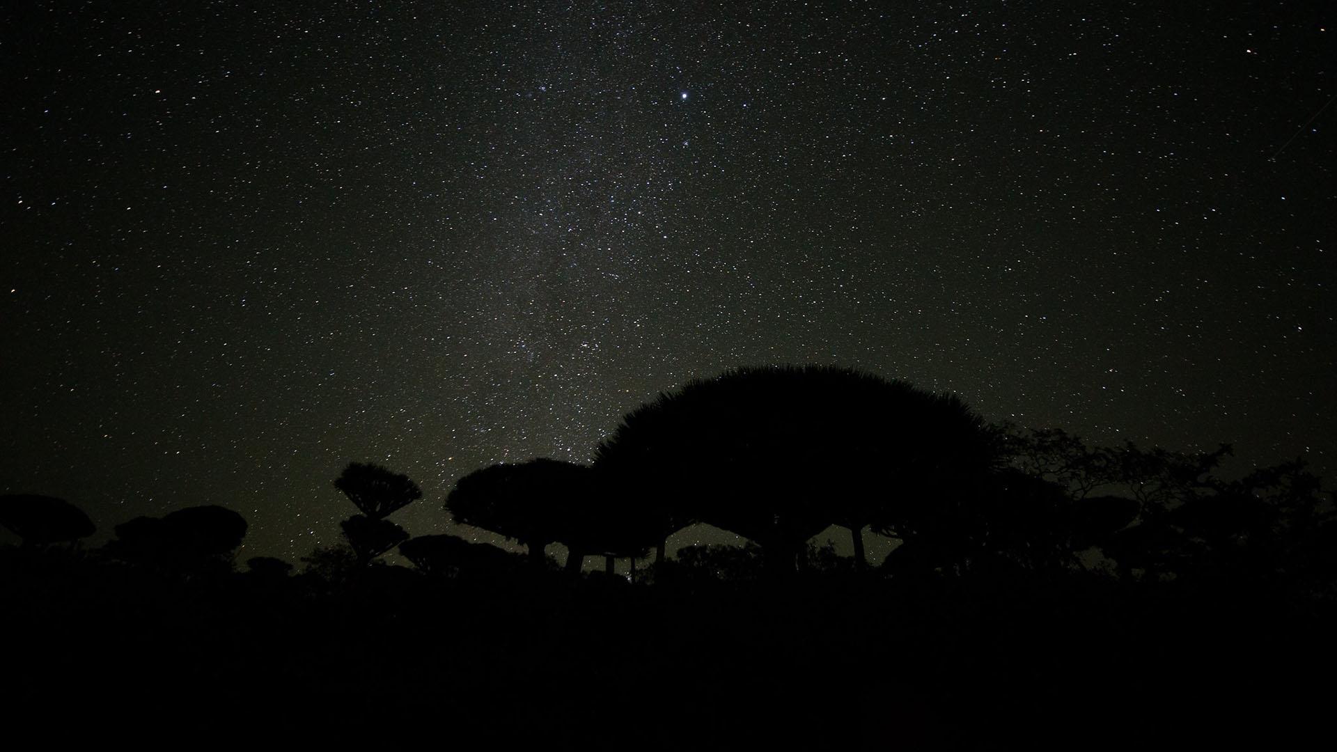 Voie lactée sur le plateau de Firmhin, Socotra