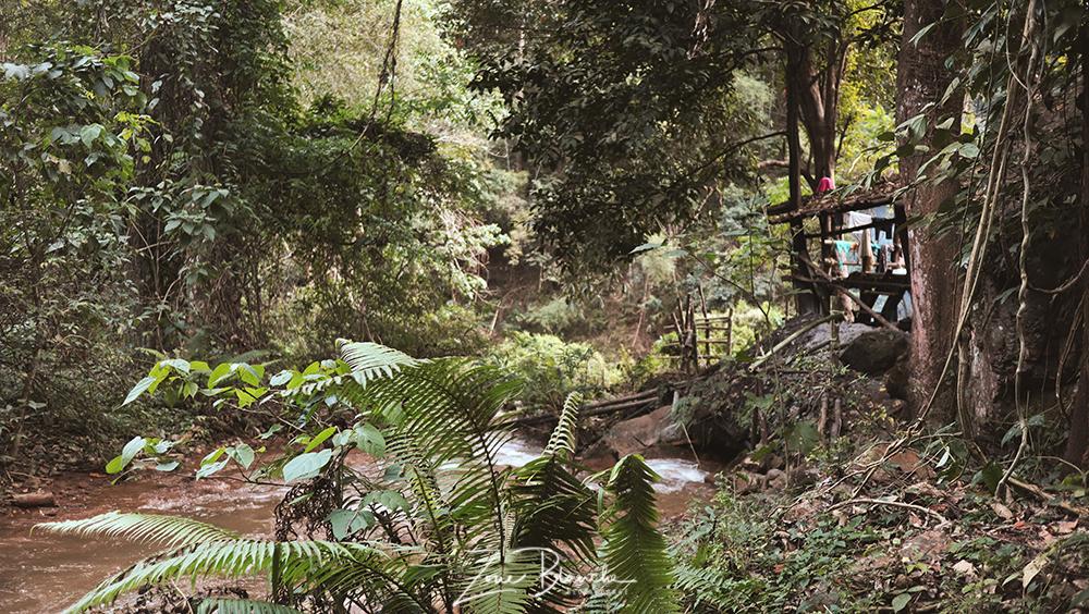 Cabane en bambou en Thaïlande