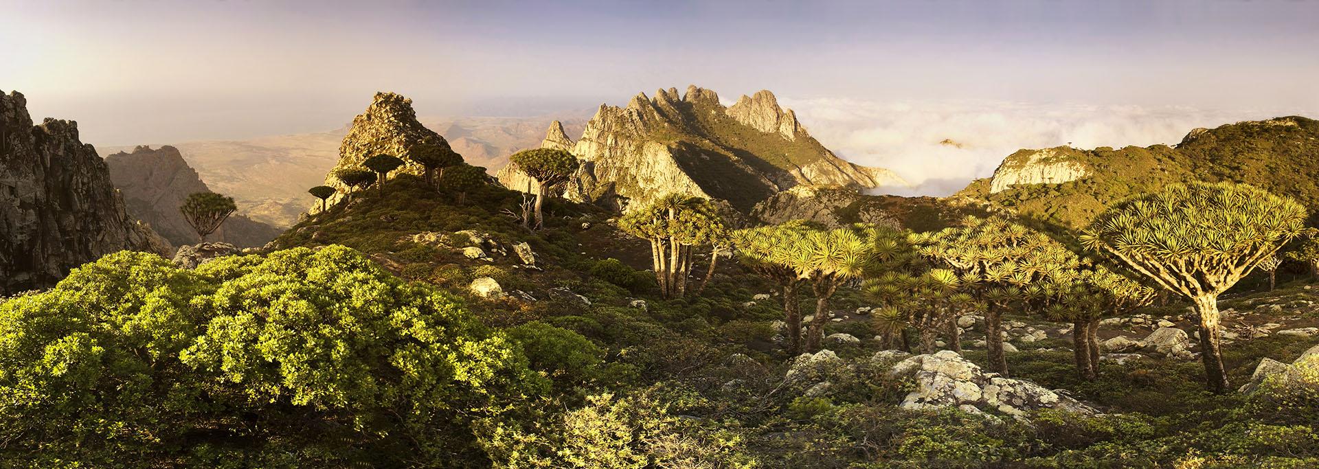 Panorama de Socotra, Yémen