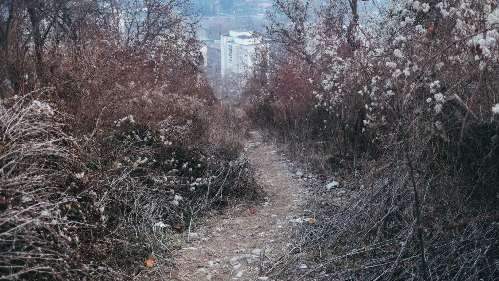 Strada Ion Neculce