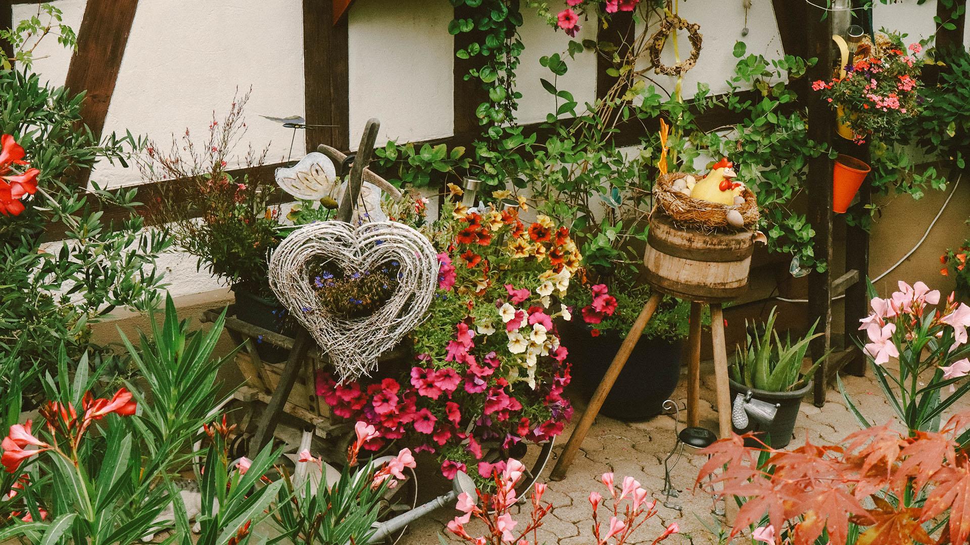 Pots de fleurs, Allemagne