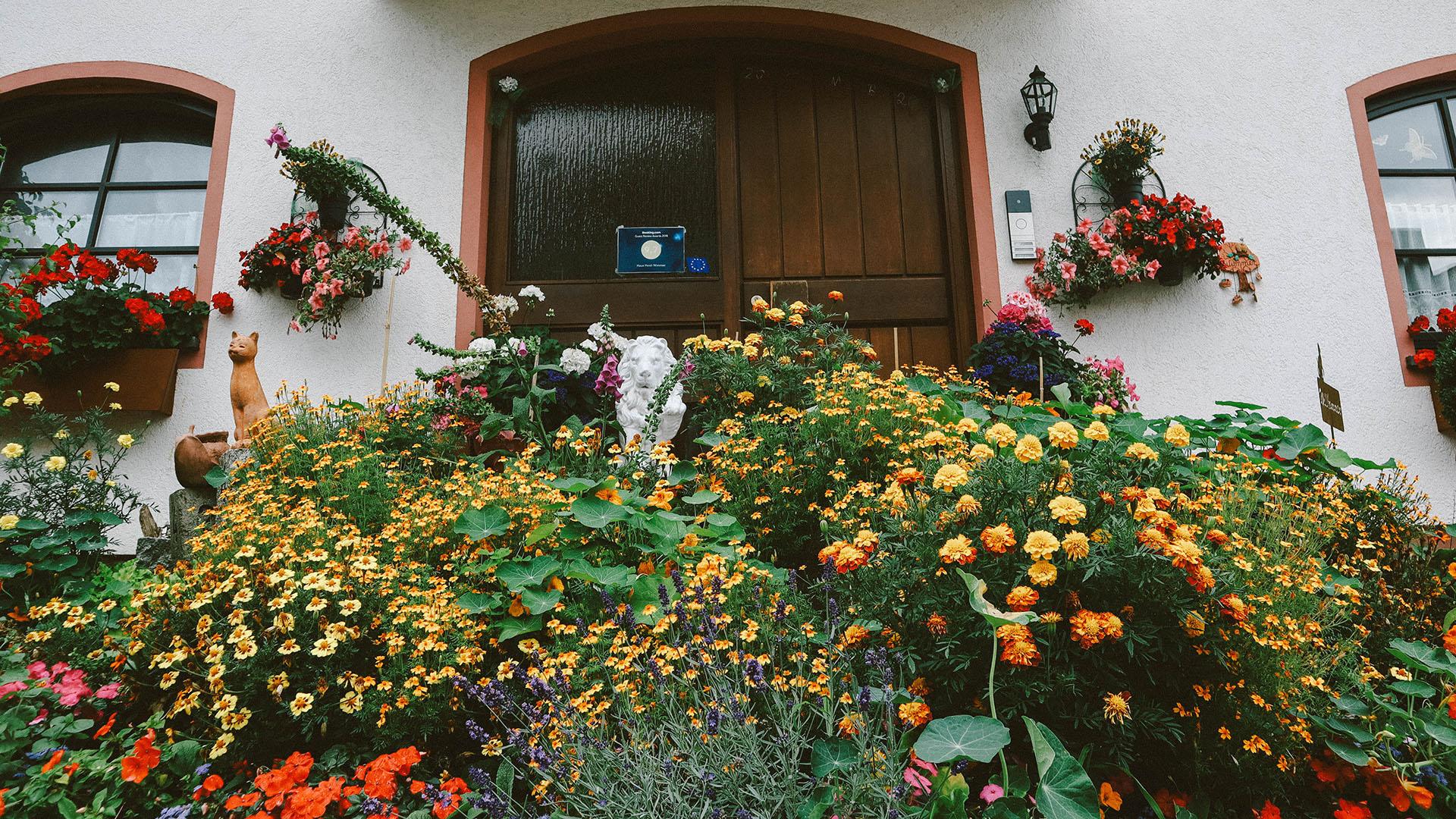 Façade de maison fleurie, Allemagne