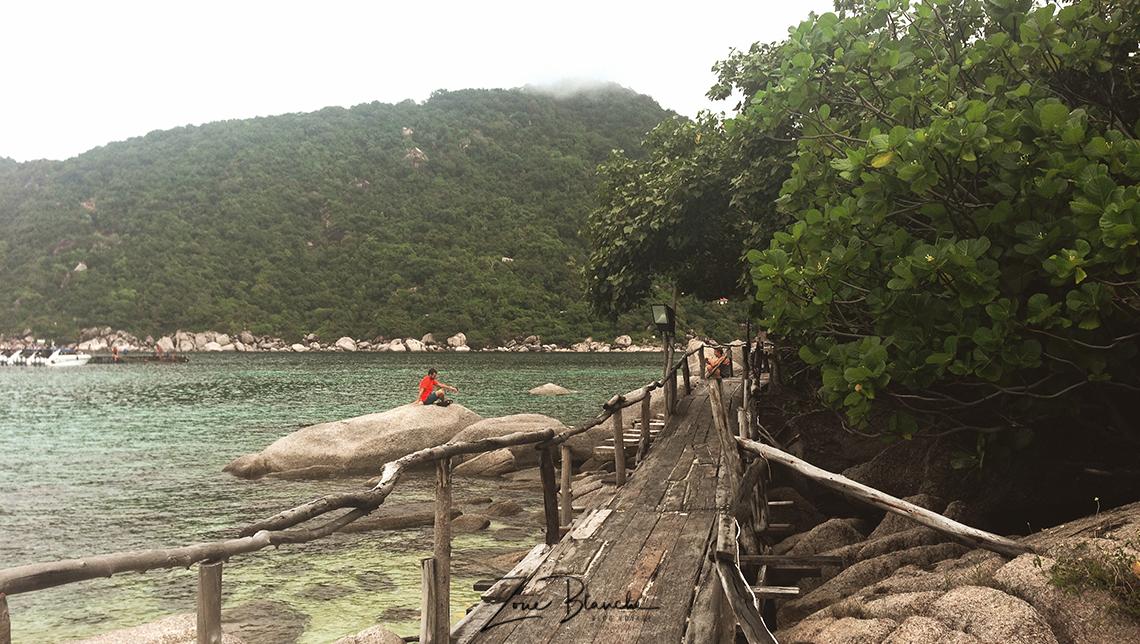 Koh Nang Yuan, Thaïlande