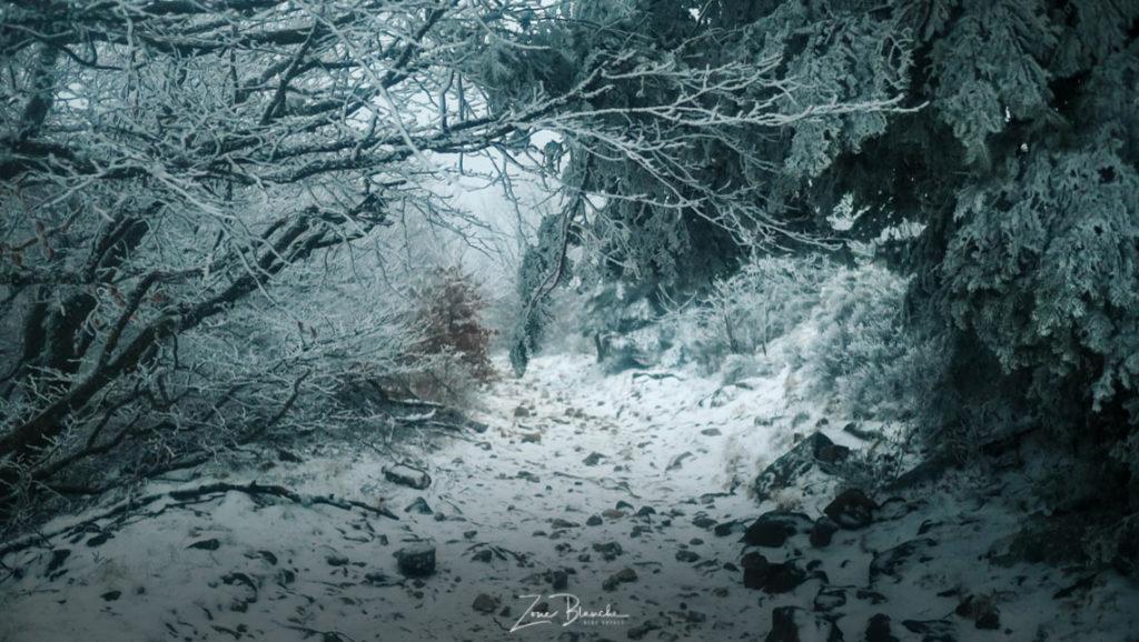 Parc du Pilat sous la neige