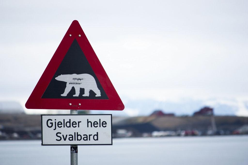 """Les fameux panneaux de signalisation : """"S'applique à l'ensemble de Svalbard"""". © Kitty Terwolbeck / Flickr"""