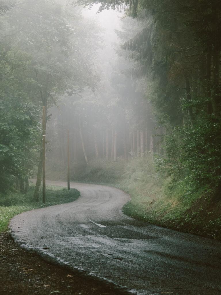 Route brumeuse des Vosges